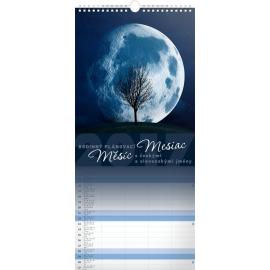 Nástěnný kalendář Měsíc 2017, 22 x 48 cm