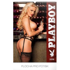 Nástěnný kalendář Playboy 2018, 33 x 46 cm
