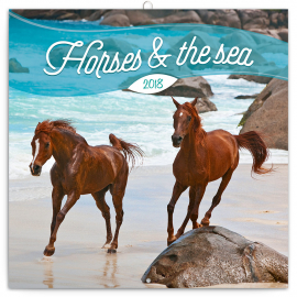 Grid calendar Horses & the Sea – Christiane Slawik 2018, 30 x 30 cm
