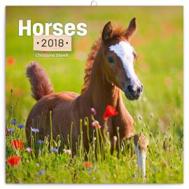 Poznámkový kalendář Koně – Christiane Slawik 2018, 30 x 30 cm