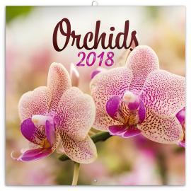 Poznámkový kalendář Orchideje 2018, 30 x 30 cm