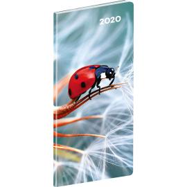 Pocket diary Ladybug planning monthly 2020, 8 × 18 cm