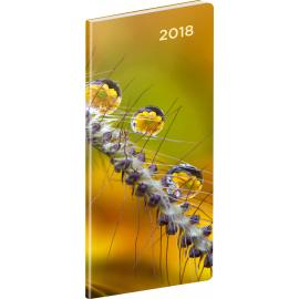 Kapesní diář Detail 2018, plánovací měsíční, 8 x 18 cm