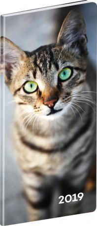 Kapesní diář Kočky 2019, plánovací měsíční, 8 x 18 cm