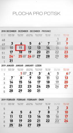 Nástěnný kalendář 3 mesačný štandard šedý – so slovenskými menami SK 2019, 29,5 x 43 cm