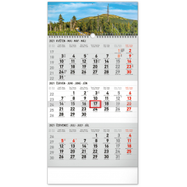 Wall calendar 3months Landscape grey with Czech names 2021, 29,5 × 43 cm