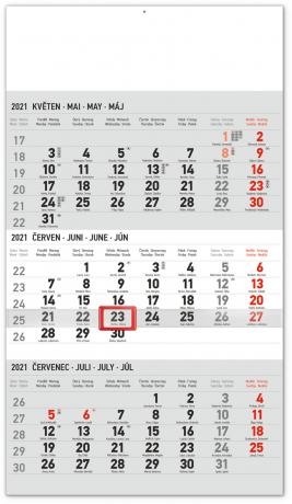 Nástěnný kalendář 3měsíční standard šedý – s českými jmény 2021, 29,5 × 43 cm
