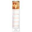 Nástěnný kalendář Alfons Mucha 2020, 12 × 48 cm