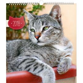 Nástěnný kalendář Kočky 2018, 30 x 34 cm
