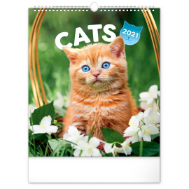 Wall calendar Cats 2021, 30 × 34 cm