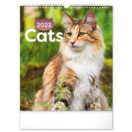 Wall calendar Cats 2022, 30 × 34 cm