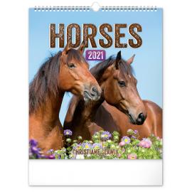 Wall calendar Horses 2021, 30 × 34 cm