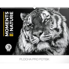 Nástěnný kalendář Momenty v přírodě 2019, 48 x 33 cm
