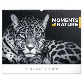 Wall calendar Moments of nature 2020, 48 × 33 cm