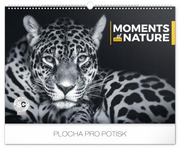 Wall calendar Moments of nature 2020, 48 × 33 cm