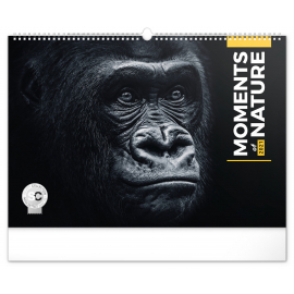 Wall calendar Moments of Nature 2021, 48 × 33 cm
