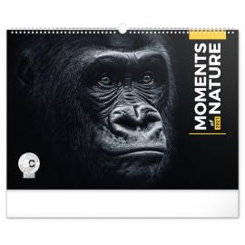 Nástěnný kalendář Momenty v přírodě 2021, 48 × 33 cm
