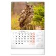 Nástěnný kalendář Myslivecký 2021, 33 × 46 cm