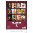 Nástěnný kalendář Playboy 2019, 33 x 46 cm