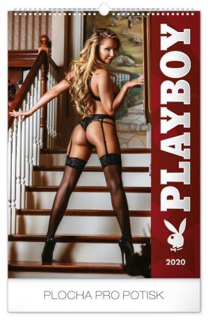 Nástěnný kalendář Playboy 2020, 33 × 46 cm