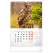 Nástěnný kalendář Poľovnícky SK 2021, 33 × 46 cm