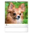 Nástěnný kalendář Psi 2021, 30 × 34 cm