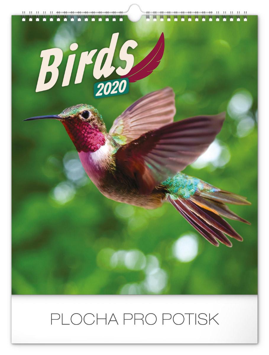 Obrovské ptáky pic