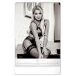 Nástěnný kalendář Romantic Girls – Martin Šebesta 2021, 33 × 46 cm