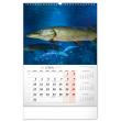 Nástěnný kalendář Rybářský 2022, 33 × 46 cm