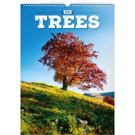 Nástěnný kalendář Stromy 2018, 33 x 46 cm