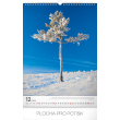 Nástěnný kalendář Stromy 2019, 33 x 46 cm