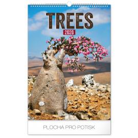 Nástěnný kalendář Stromy 2020, 33 × 46 cm