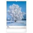 Nástěnný kalendář Stromy 2021, 33 × 46 cm