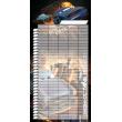 Plánovací kalendář Auta, nedatovaný, 30 x 30 cm