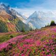 Poznámkový kalendář Alpy 2022, 30 × 30 cm