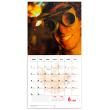 Poznámkový kalendář Čertí brko 2020, 30 × 30 cm