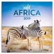 Poznámkový kalendář Divoká Afrika 2019, 30 x 30 cm