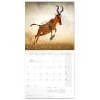 Poznámkový kalendář Divoká Afrika 2020, 30 × 30 cm