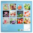 Poznámkový kalendář Gin & Tonik 2021, 30 × 30 cm