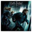 Poznámkový kalendář Harry Potter 2020, 30 × 30 cm