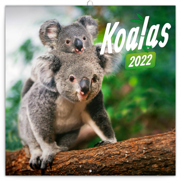 Poznámkový kalendář Koaly 2022, 30 × 30 cm
