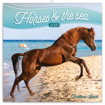 Poznámkový kalendář Koně a moře 2020, 30 × 30 cm