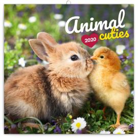 Grid calendar Animal Cuties 2020, 30 × 30 cm