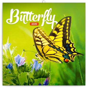 Poznámkový kalendář Motýli 2019, 30 x 30 cm