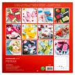 Poznámkový kalendář Nanuky 2019, 30 x 30 cm