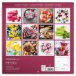 Poznámkový kalendář Nanuky 2020, 30 × 30 cm