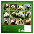 Poznámkový kalendář Pandy 2021, 30 × 30 cm
