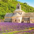 Poznámkový kalendář Provence 2019, voňavý, 30 x 30 cm