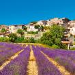 Poznámkový kalendář Provence 2020, voňavý, 30 × 30 cm