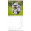 Poznámkový kalendář Psi 2022, 30 × 30 cm